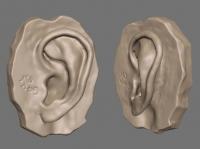 earsurface