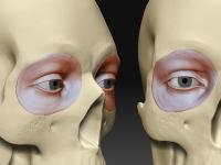eyestudy